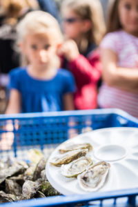 visite ostréicole assiette huitre Plougasnou