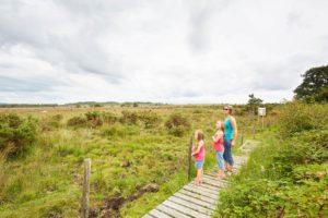Monts d'arrée, landes du cragou balade nature en famille
