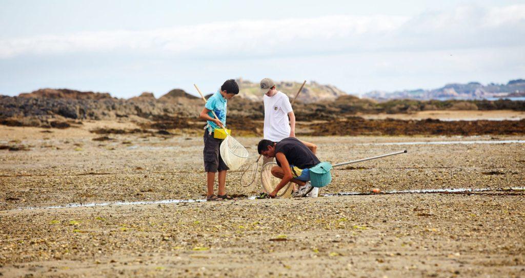 Pêche à pied Ile Callot Carantec